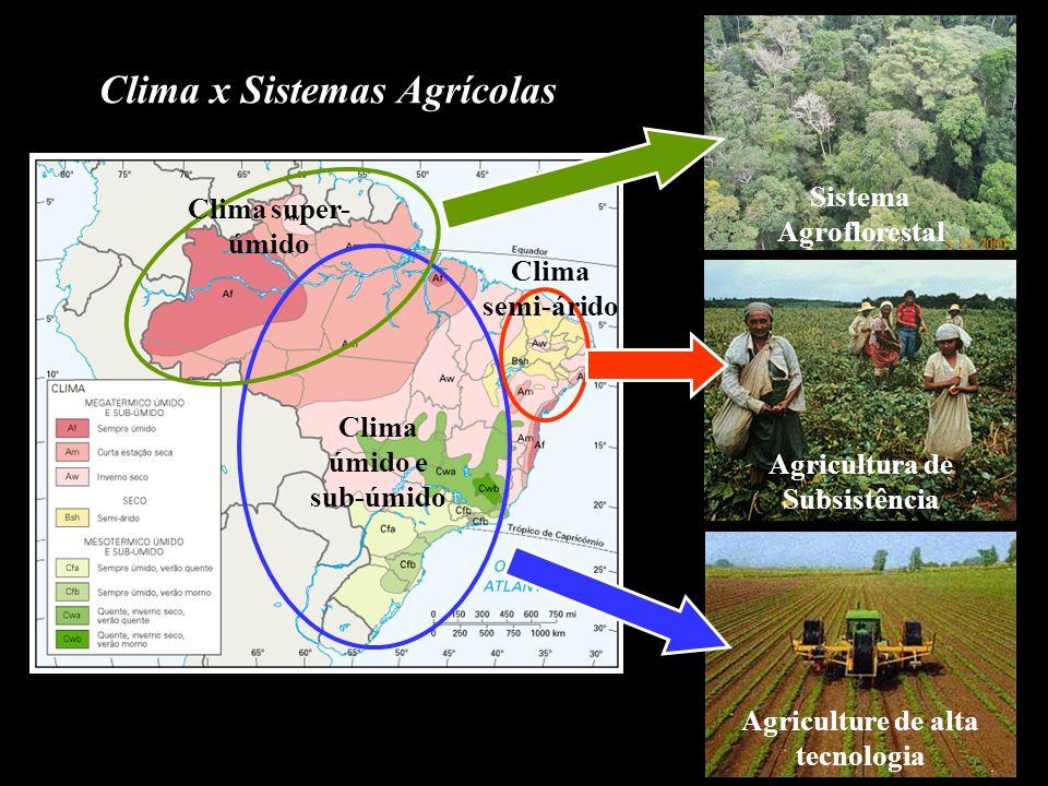 Clima x Sistemas Agrícolas
