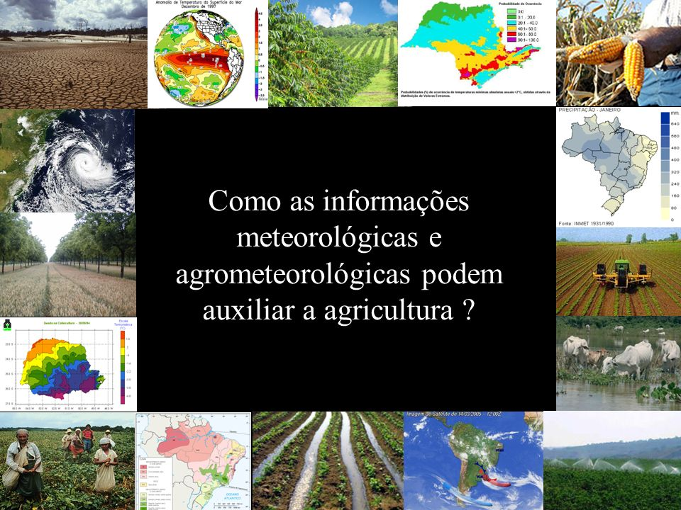 Como as informações meteorológicas e agrometeorológicas podem auxiliar a agricultura