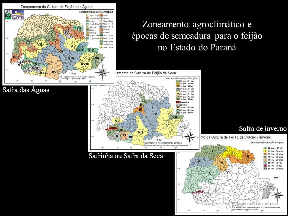 Zoneamento agroclimático e épocas de semeadura para o feijão no Estado do Paraná
