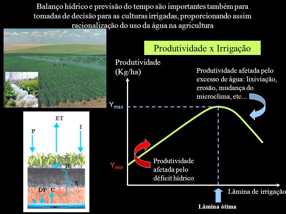 Produtividade x Irrigação