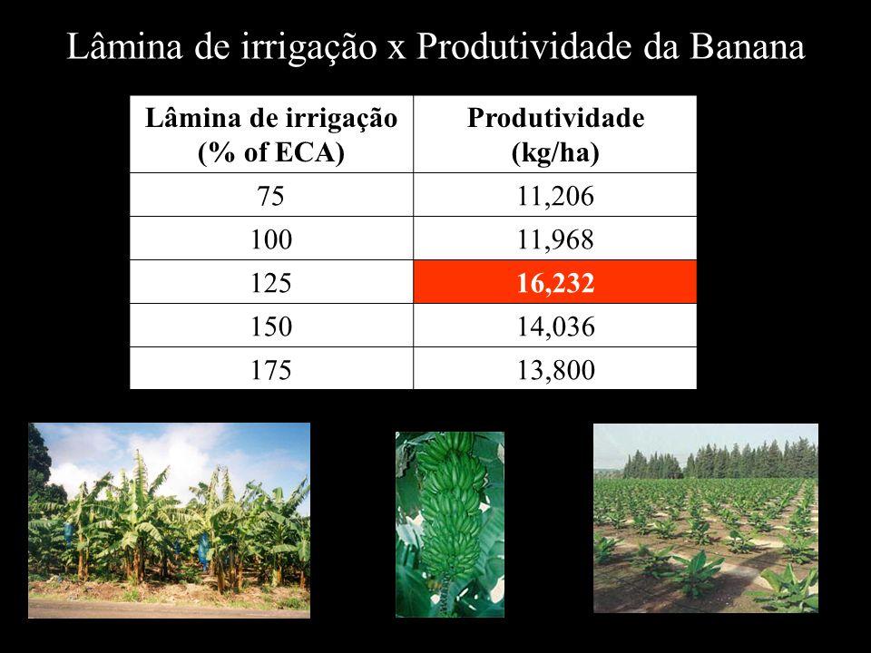 Lâmina de irrigação (% of ECA) Produtividade (kg/ha)