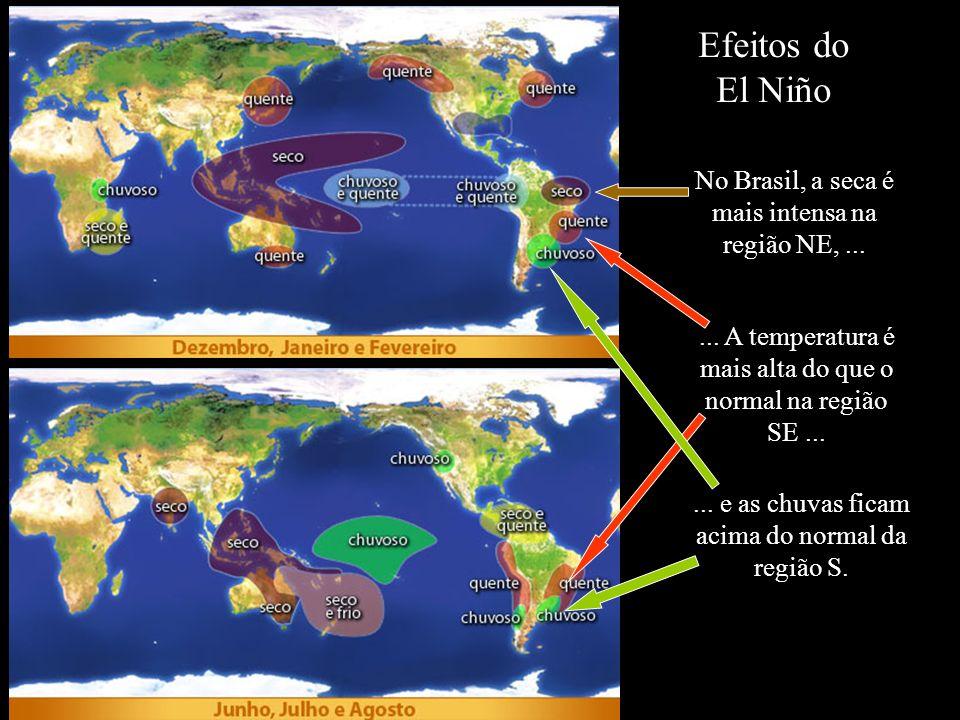 Efeitos do El Niño No Brasil, a seca é mais intensa na região NE, ...