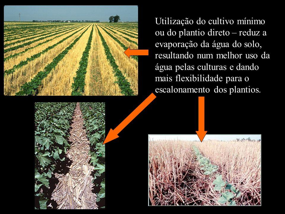 Utilização do cultivo mínimo ou do plantio direto – reduz a evaporação da água do solo, resultando num melhor uso da água pelas culturas e dando mais flexibilidade para o escalonamento dos plantios.