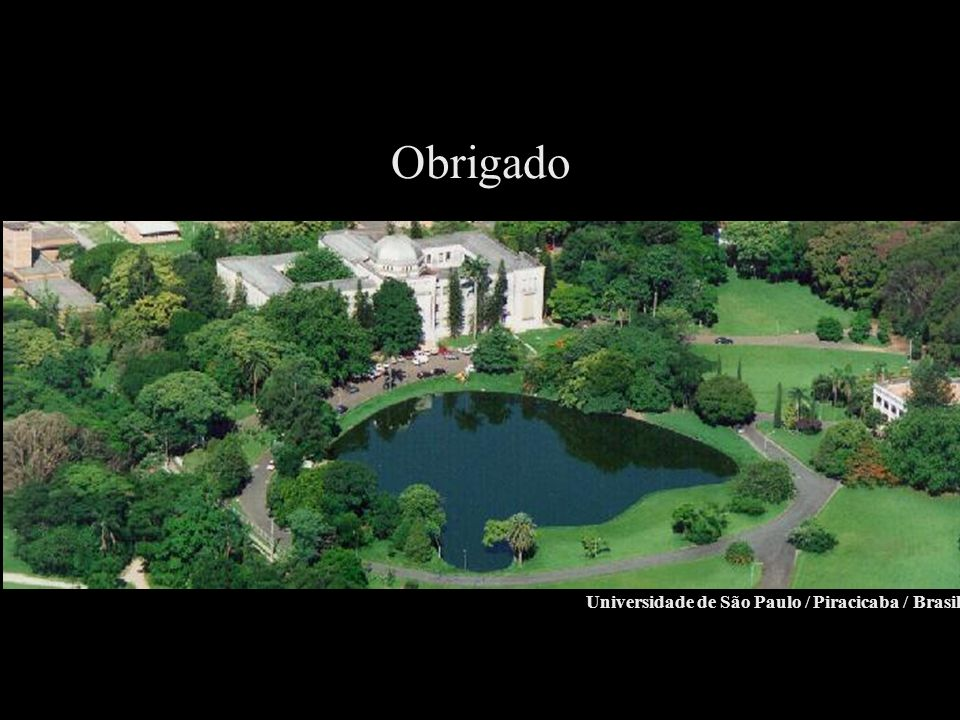 Obrigado Universidade de São Paulo / Piracicaba / Brasil