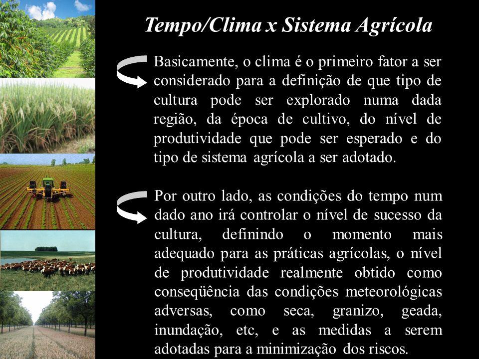 Tempo/Clima x Sistema Agrícola