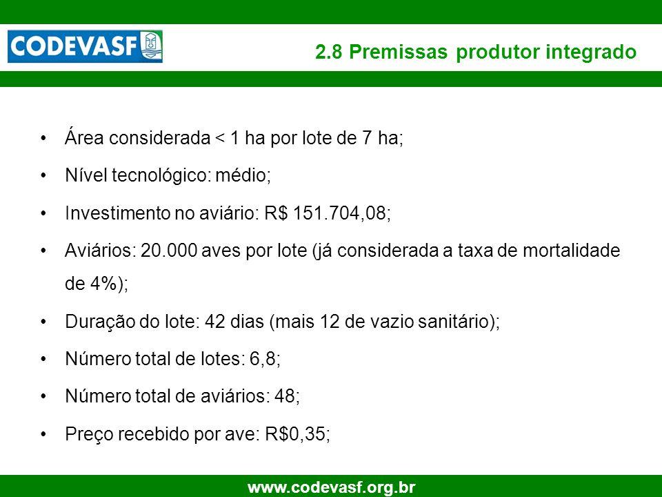 2.8 Premissas produtor integrado