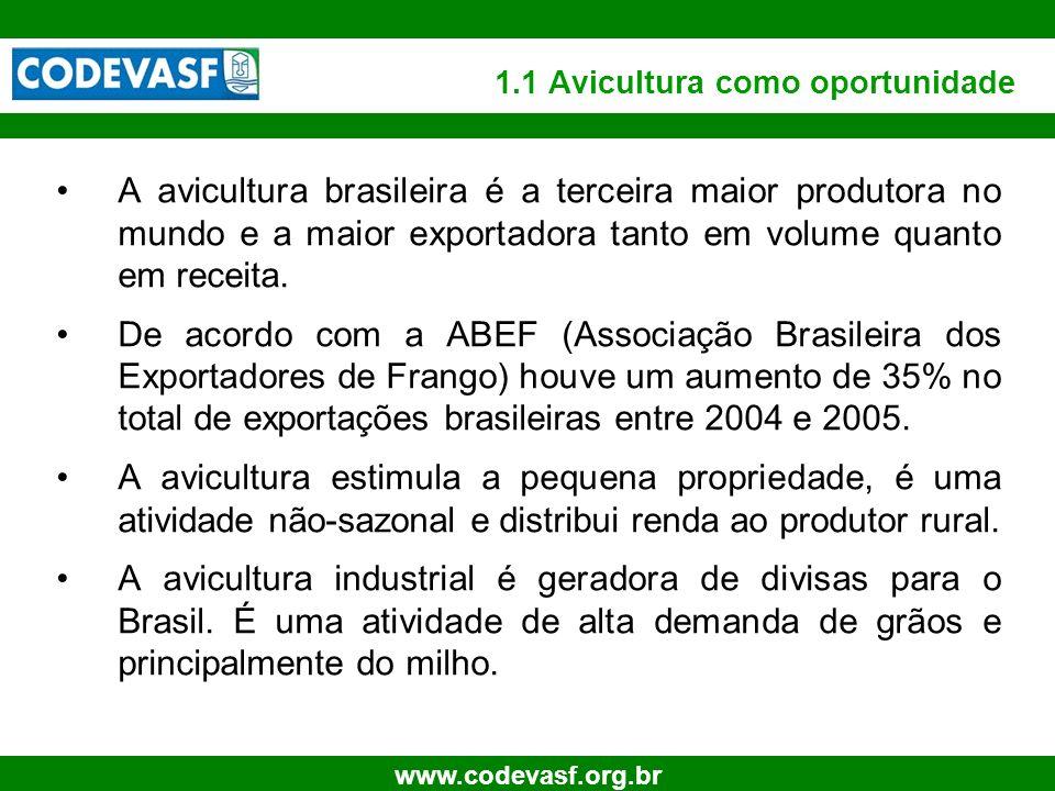 1.1 Avicultura como oportunidade