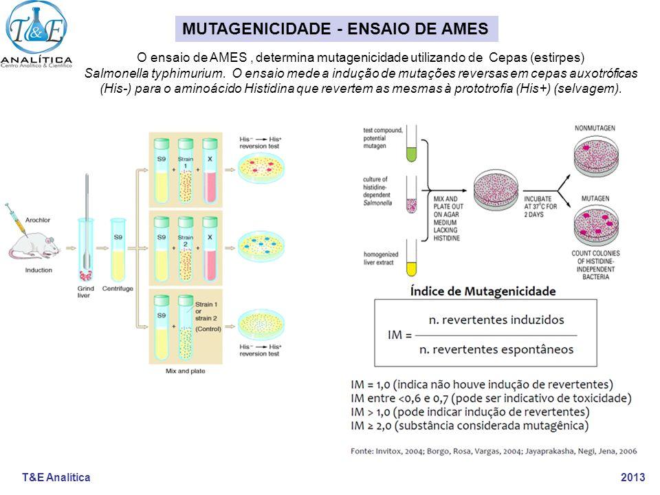 MUTAGENICIDADE - ENSAIO DE AMES