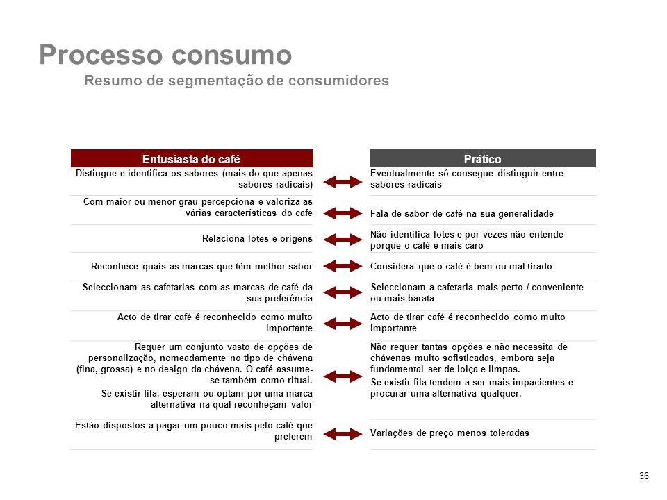 Processo consumo Resumo de segmentação de consumidores