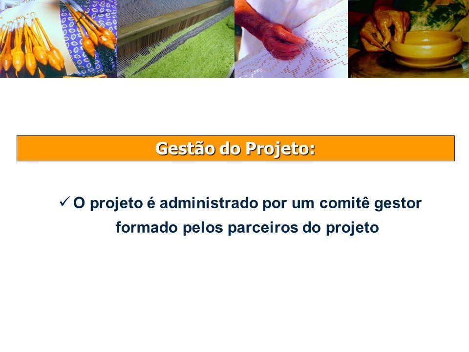 Gestão do Projeto: O projeto é administrado por um comitê gestor formado pelos parceiros do projeto
