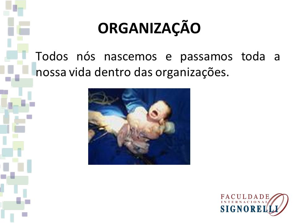 ORGANIZAÇÃO Todos nós nascemos e passamos toda a nossa vida dentro das organizações.