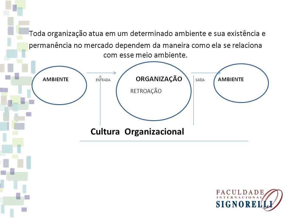 Toda organização atua em um determinado ambiente e sua existência e permanência no mercado dependem da maneira como ela se relaciona com esse meio ambiente.