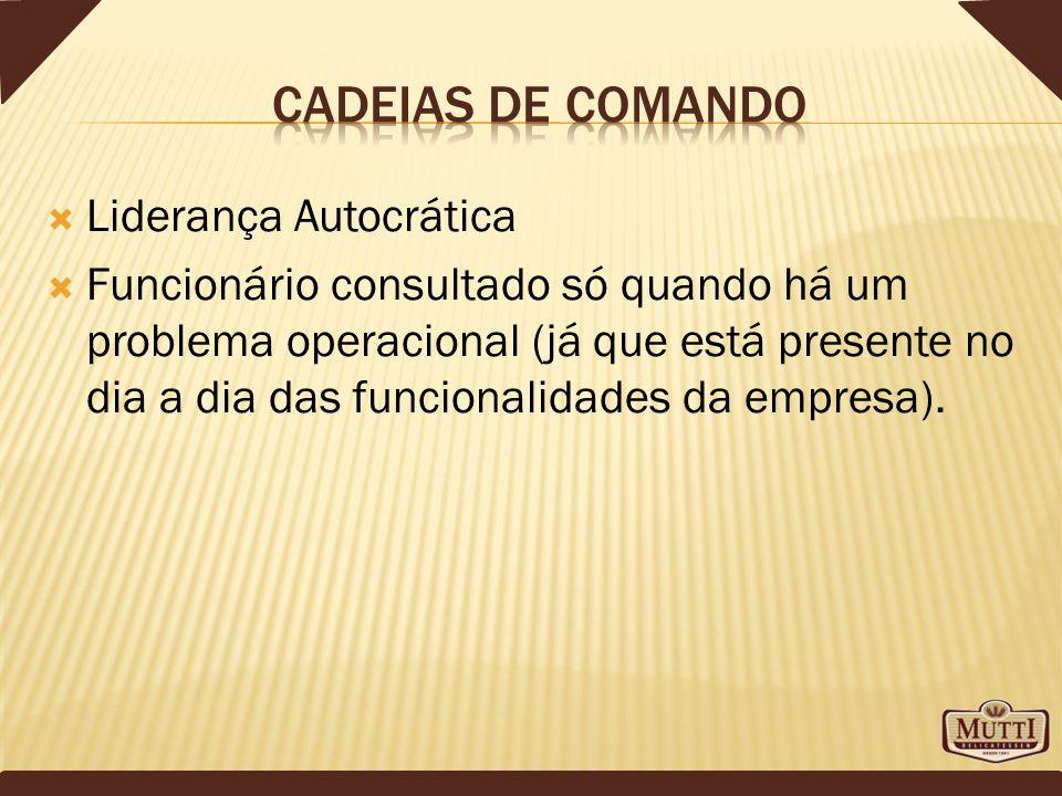 Cadeias de comando Liderança Autocrática
