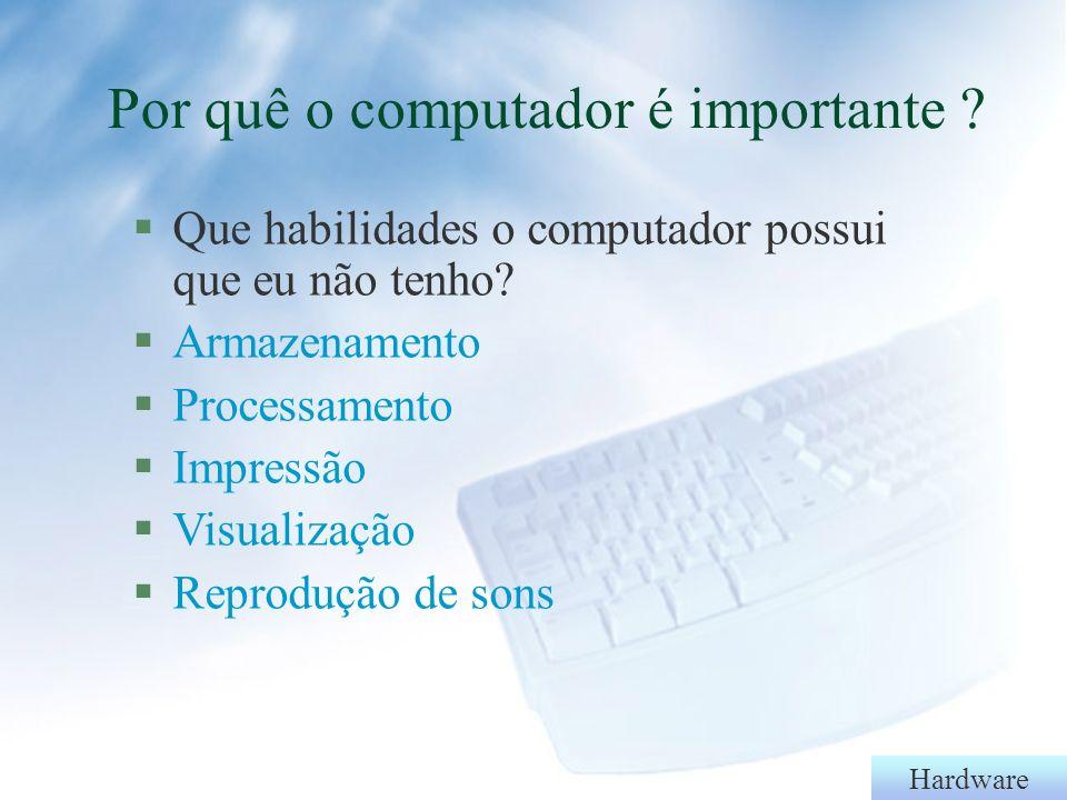 Por quê o computador é importante