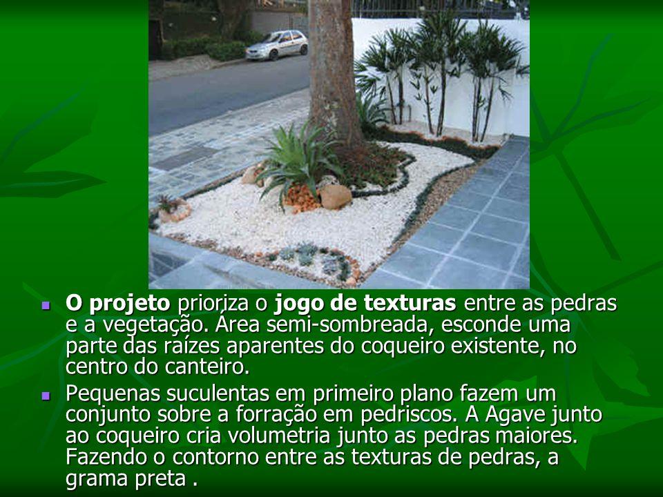 O projeto prioriza o jogo de texturas entre as pedras e a vegetação