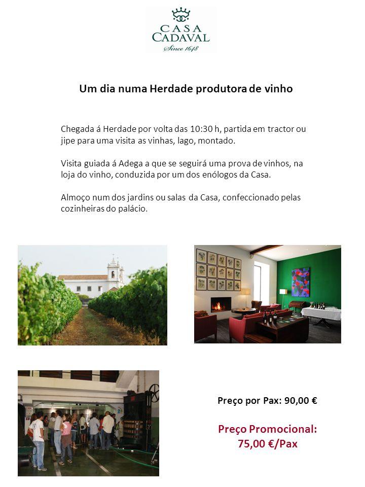 Um dia numa Herdade produtora de vinho