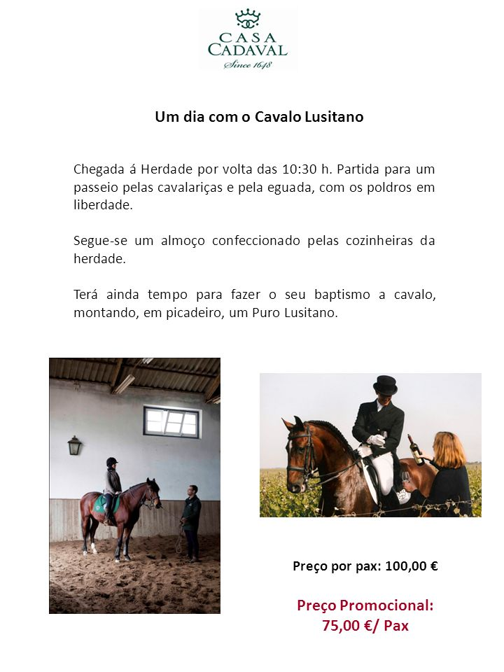 Um dia com o Cavalo Lusitano