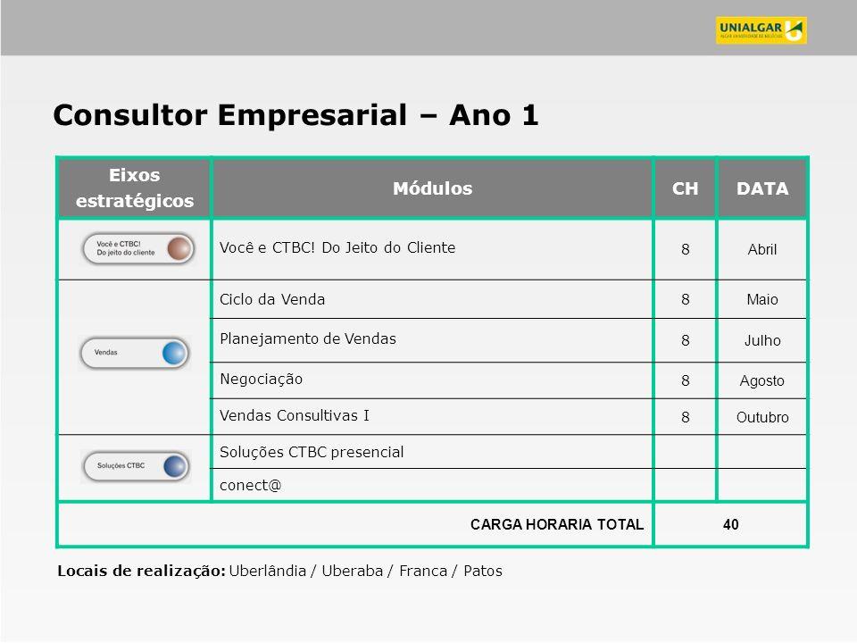Consultor Empresarial – Ano 1