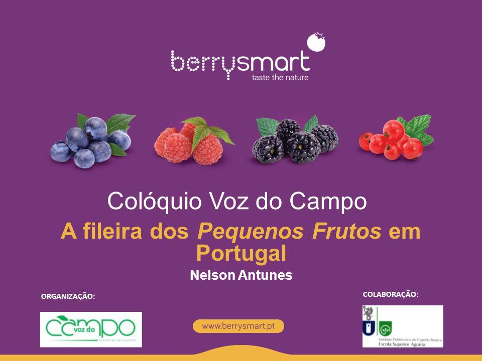 A fileira dos Pequenos Frutos em Portugal