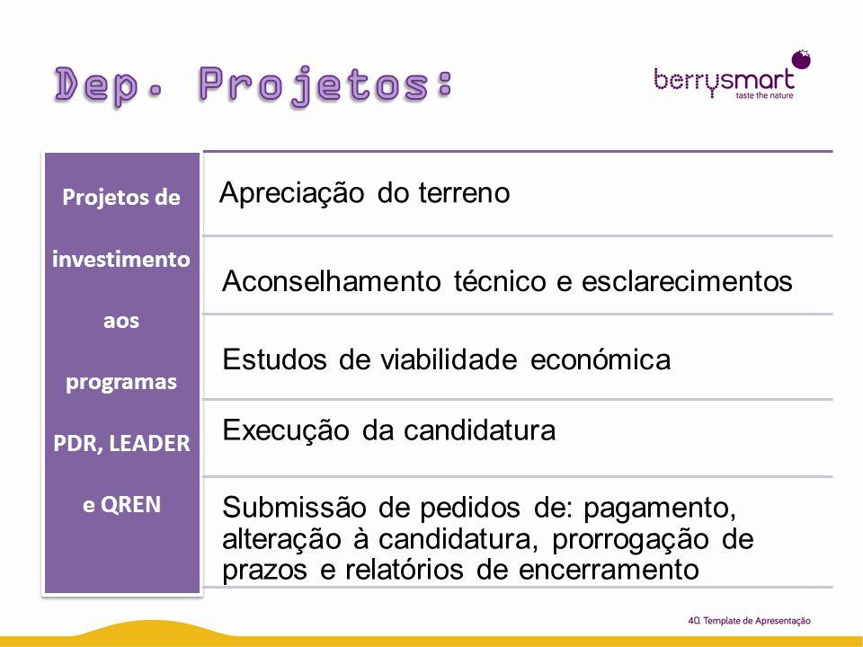 Projetos de investimento aos programas PDR, LEADER e QREN