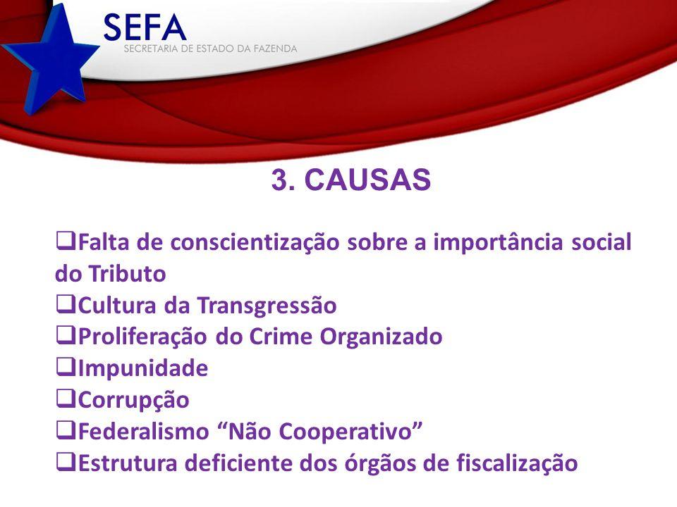3. CAUSAS Falta de conscientização sobre a importância social
