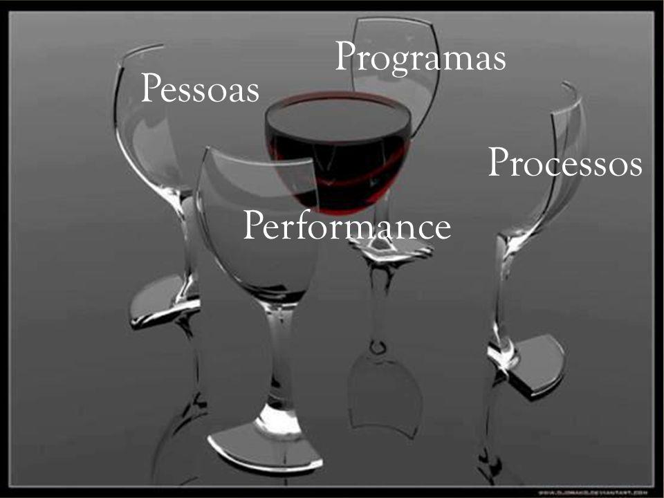 Programas Pessoas Processos Performance