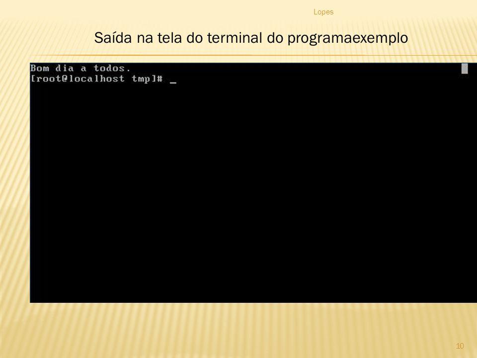 Saída na tela do terminal do programaexemplo