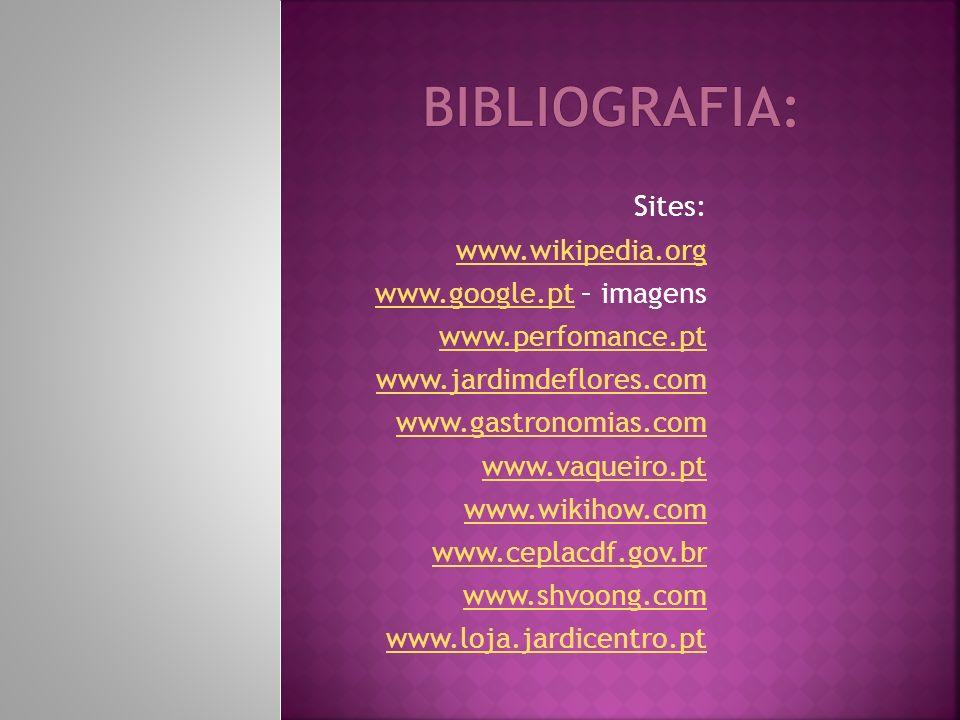 Bibliografia: Sites: www.wikipedia.org www.google.pt – imagens