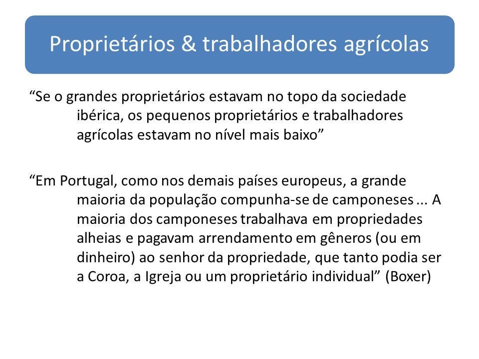Proprietários & trabalhadores agrícolas