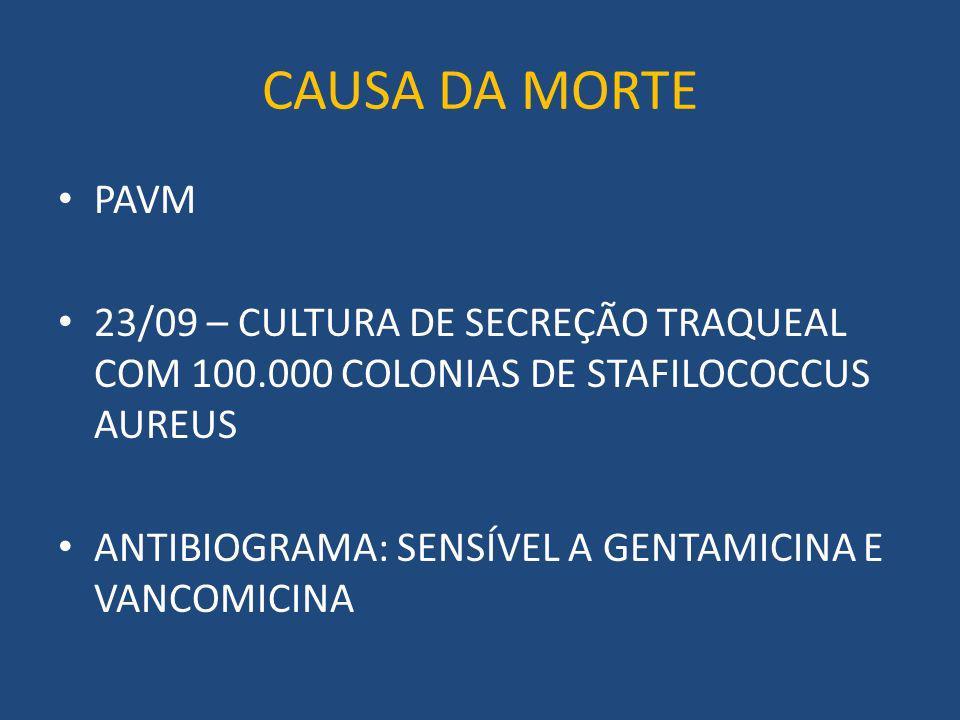 CAUSA DA MORTE PAVM. 23/09 – CULTURA DE SECREÇÃO TRAQUEAL COM 100.000 COLONIAS DE STAFILOCOCCUS AUREUS.