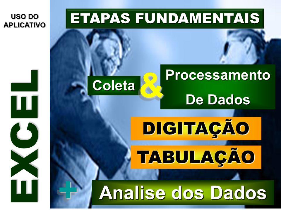 EXCEL & + Analise dos Dados DIGITAÇÃO TABULAÇÃO ETAPAS FUNDAMENTAIS