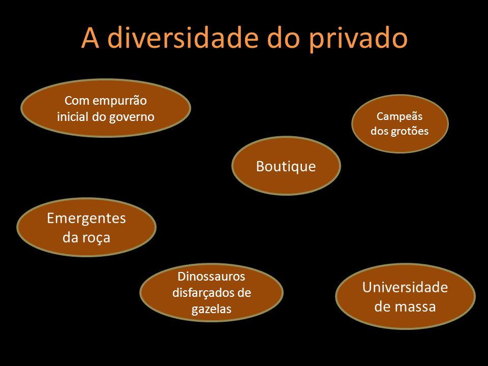 A diversidade do privado