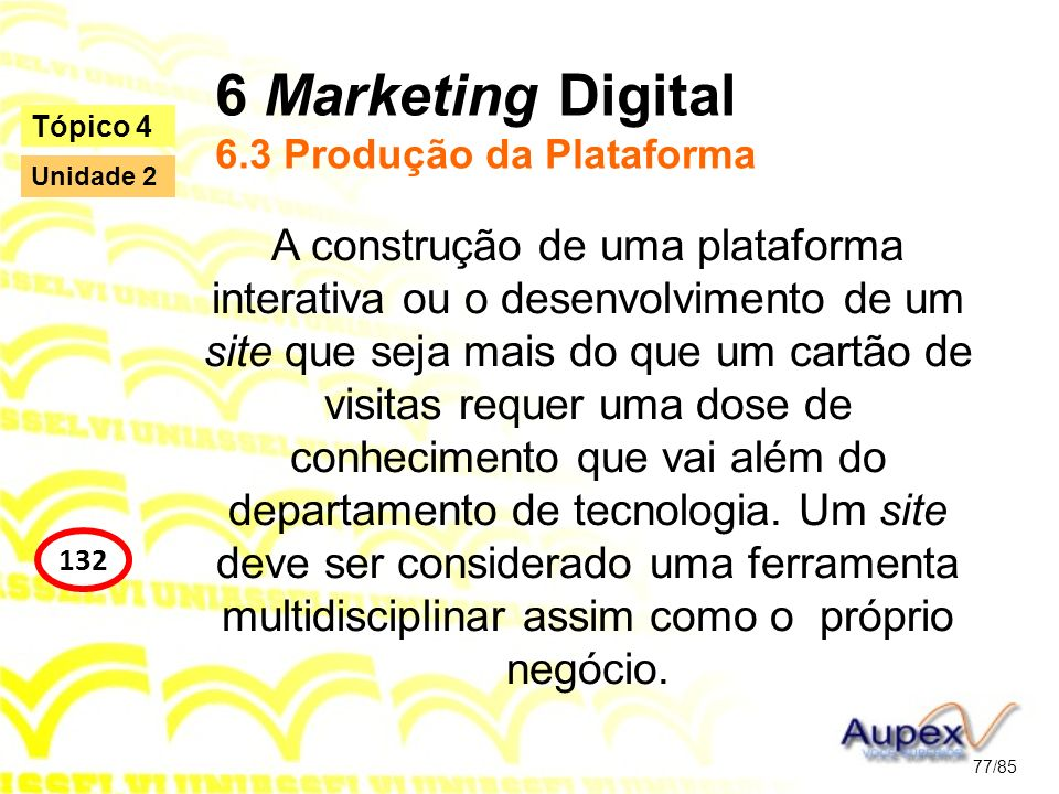 6 Marketing Digital 6.3 Produção da Plataforma