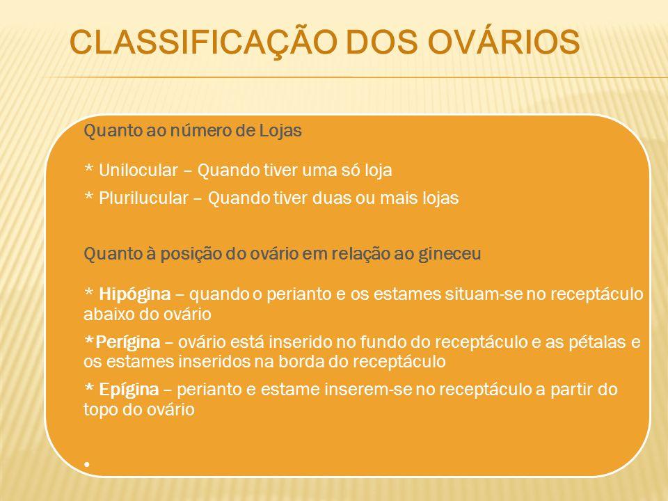 CLASSIFICAÇÃO DOS OVÁRIOS
