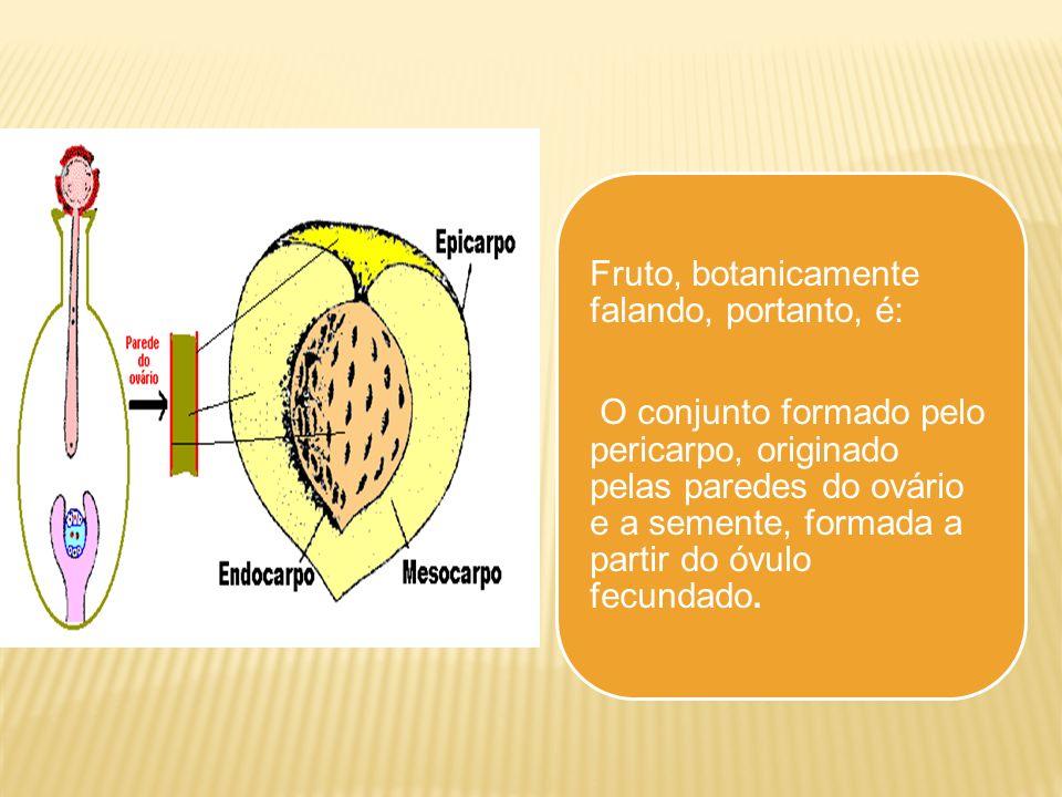 Fruto, botanicamente falando, portanto, é: