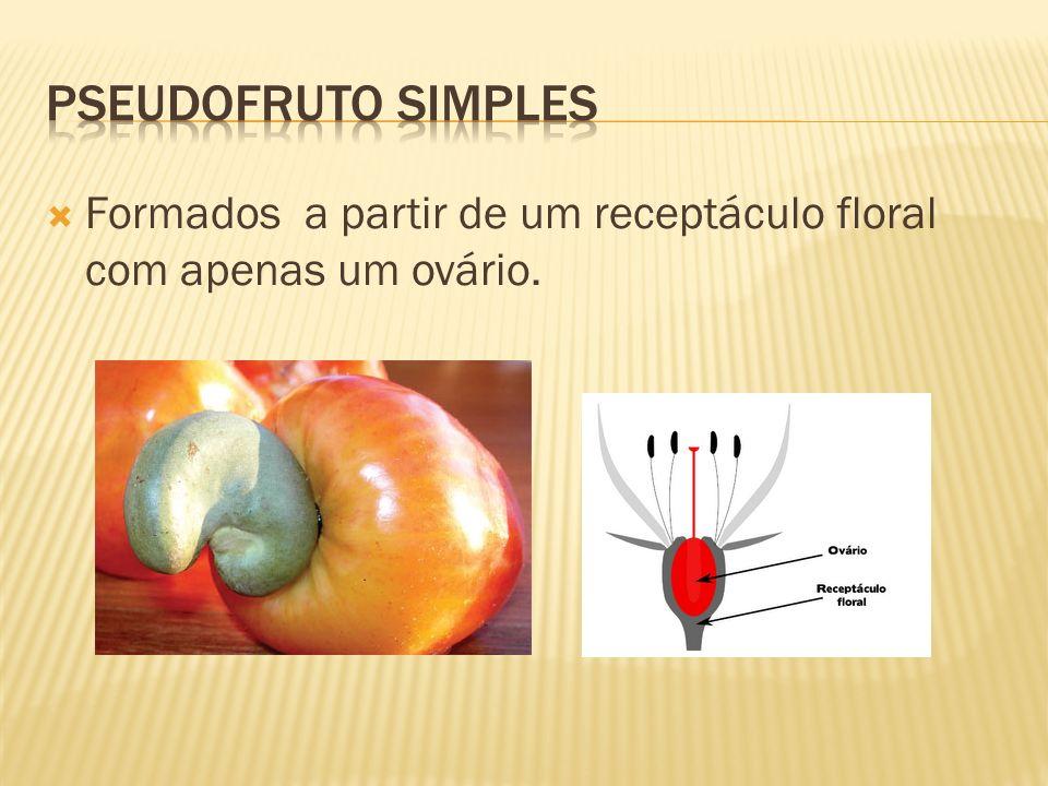 Pseudofruto Simples Formados a partir de um receptáculo floral com apenas um ovário.