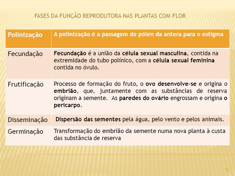 FASES DA FUNÇÃO REPRODUTORA NAS PLANTAS COM FLOR