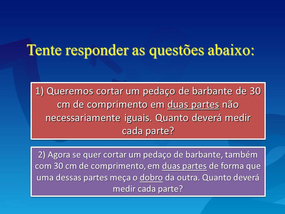 Tente responder as questões abaixo: