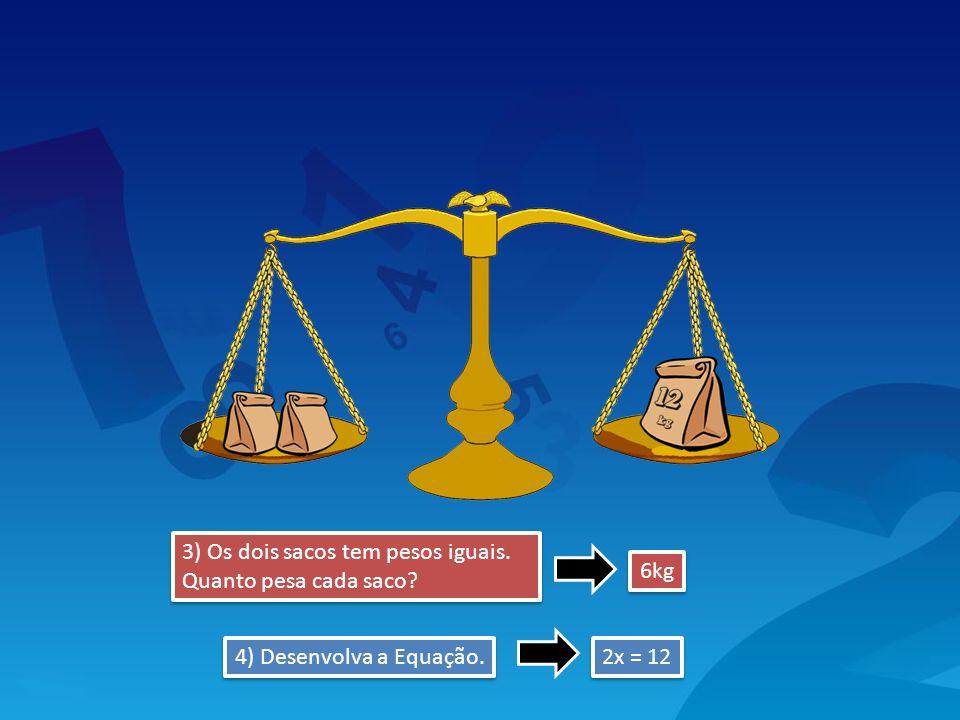 3) Os dois sacos tem pesos iguais. Quanto pesa cada saco