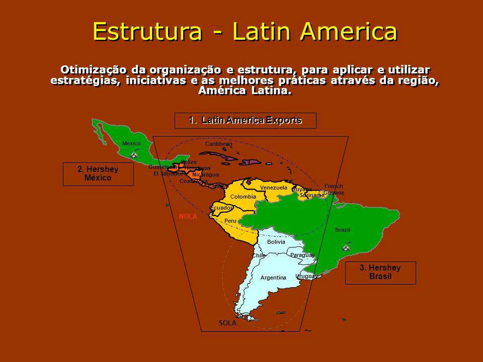 Estrutura - Latin America Otimização da organização e estrutura, para aplicar e utilizar estratégias, iniciativas e as melhores práticas através da região, América Latina.