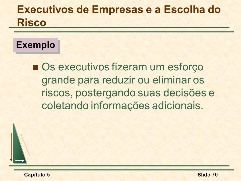 Executivos de Empresas e a Escolha do Risco