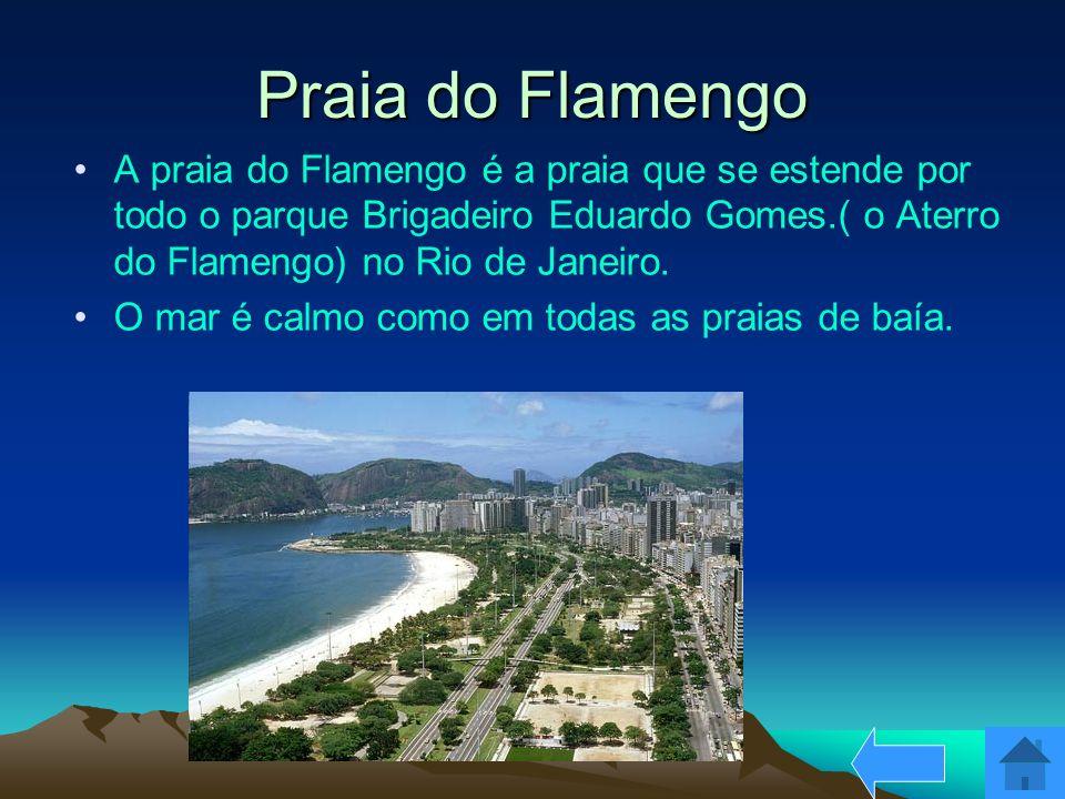 Praia do Flamengo A praia do Flamengo é a praia que se estende por todo o parque Brigadeiro Eduardo Gomes.( o Aterro do Flamengo) no Rio de Janeiro.