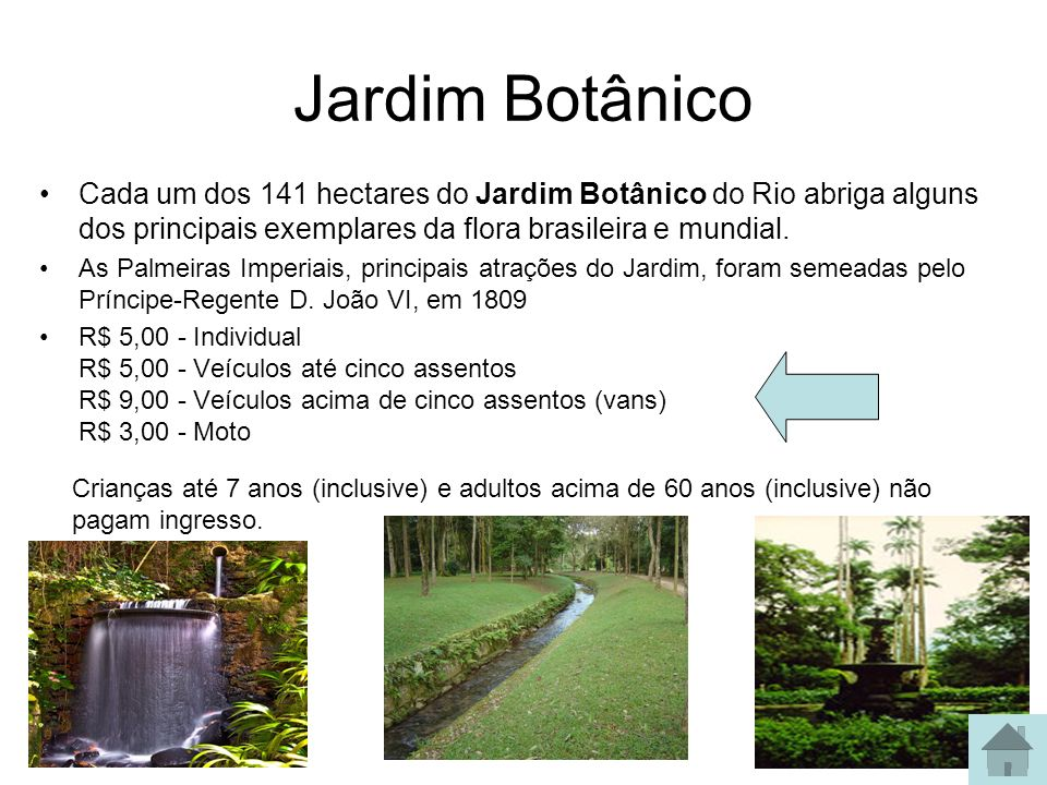 Jardim Botânico Cada um dos 141 hectares do Jardim Botânico do Rio abriga alguns dos principais exemplares da flora brasileira e mundial.