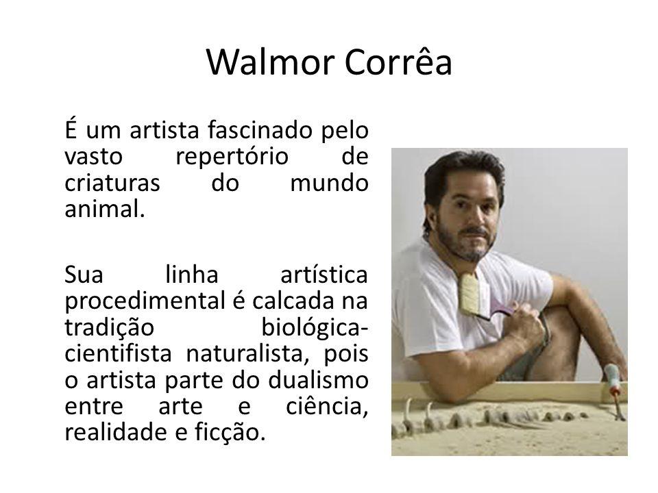 Walmor Corrêa