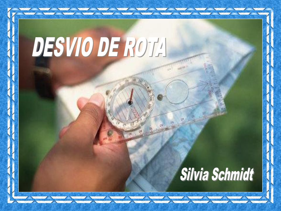 DESVIO DE ROTA Silvia Schmidt