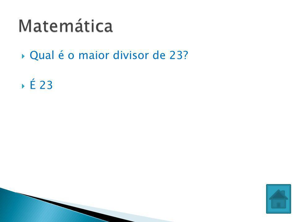 Matemática Qual é o maior divisor de 23 É 23
