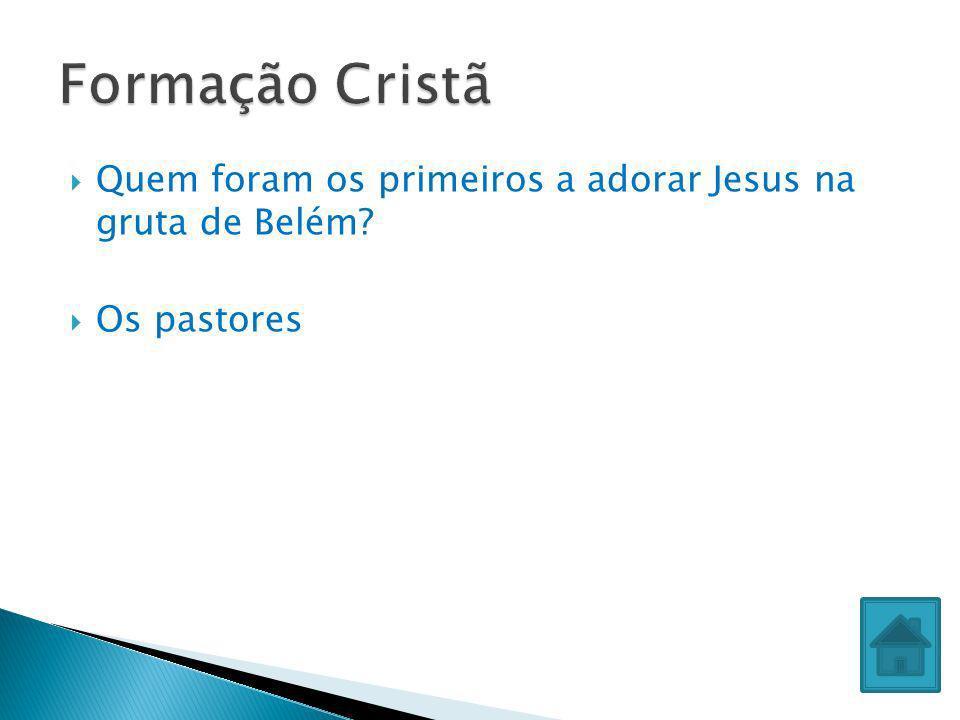 Formação Cristã Quem foram os primeiros a adorar Jesus na gruta de Belém Os pastores