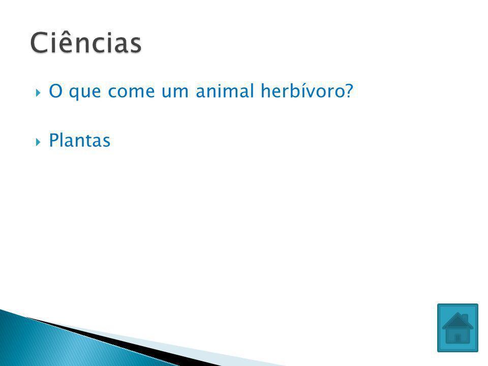 Ciências O que come um animal herbívoro Plantas