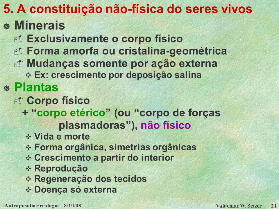 5. A constituição não-física do seres vivos
