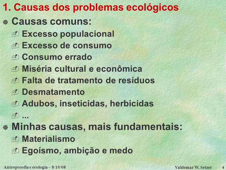 1. Causas dos problemas ecológicos